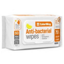 COLORWAY Čistící antiseptické ubrousky/ 60ks